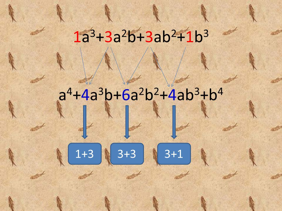 Selain menggunakan cara di atas, untuk menentukan koefisien suku-suku hasil penjabaran dari pemangkatan (a+b) dapat menggunakan Rumus Segitiga Pascal