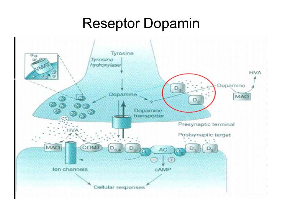 Reseptor Dopamin