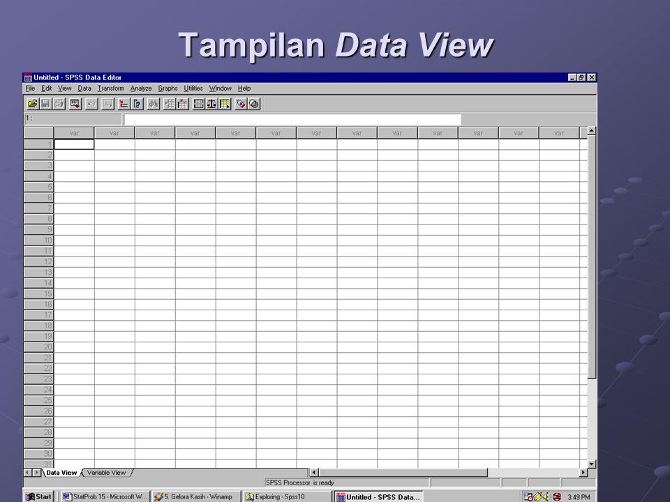 Tampilan Data View