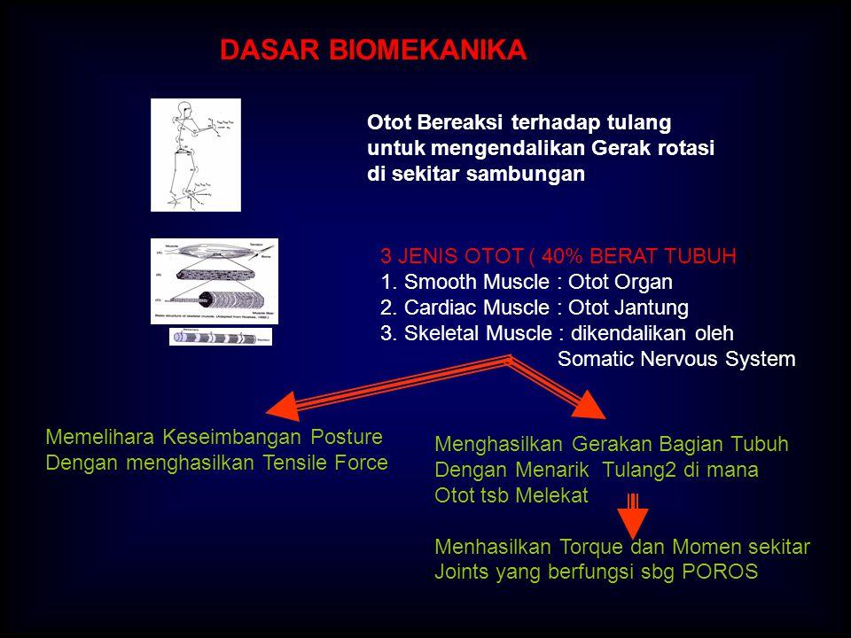 OTOT GROUP OF MUSCLE FIBRE FIBER : Panjang 5 -140 mm Diameter 0.01 – 0.1 mm Dimasuki : 1.Pembuluh Darah tipis yg Membawa O2 dan Nutrients 2.Ujung Urat Syaraf yang mengalirkan impulse elektris Dari SPINAL CORD dan OTAK Muscle Fiber terdiri dari MYOFIBRIL Myofibril tersusun dari SARCOMER, yang merupakan Kumpulan MYOFILAMENTS yang ]terdiri dari Myosin dan Actin, Geseran Actin di atas Myosin menghasilkan ( Molecular Bridge Atau Ikatan Terbentuk, Terputus ) Kontraksi pada Otot.