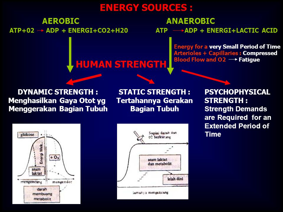 AEROBIC ANAEROBIC ATP+02 ADP + ENERGI+CO2+H20 ATP ADP + ENERGI+LACTIC ACID ENERGY SOURCES : HUMAN STRENGTH DYNAMIC STRENGTH : Menghasilkan Gaya Otot yg Menggerakan Bagian Tubuh STATIC STRENGTH : Tertahannya Gerakan Bagian Tubuh PSYCHOPHYSICAL STRENGTH : Strength Demands are Required for an Extended Period of Time Energy for a very Small Period of Time Arterioles + Capillaries : Compressed Blood Flow and O2 Fatigue