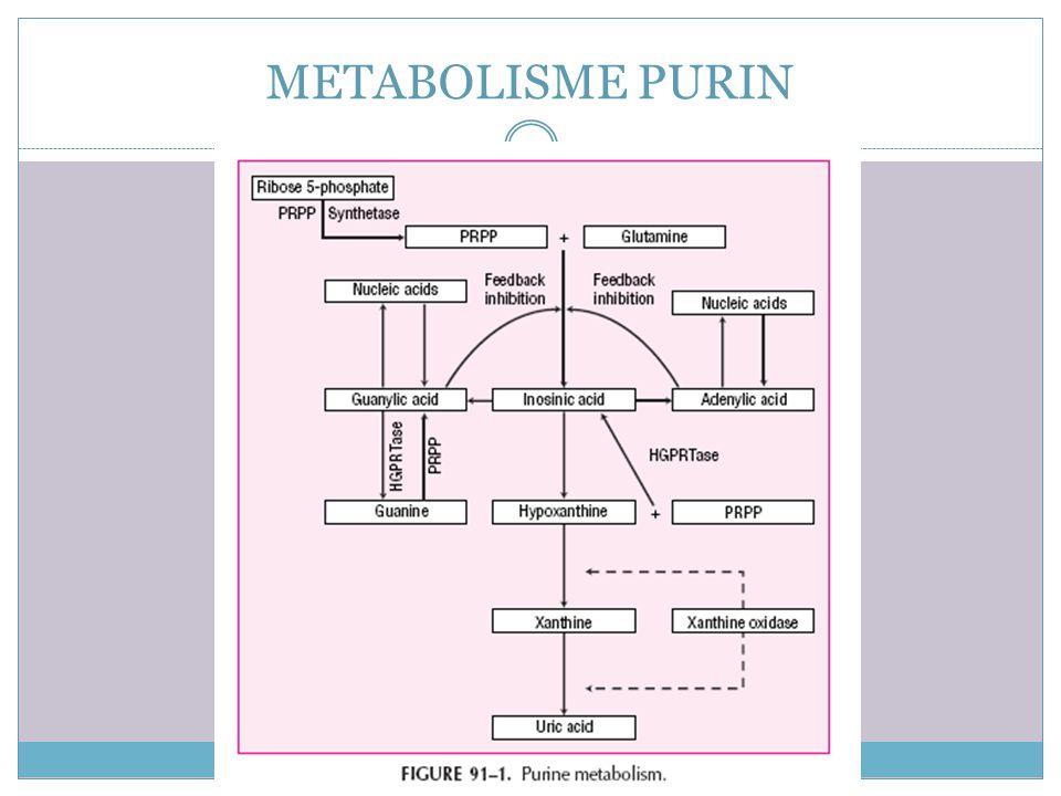 Pathophysiology GOUT PRIMER Tidak diketahui/ kelainan genetik Produksi asam urat berlebih karena : 1. Peningkatan aktivitas enzim Phosphoribosil Pirop