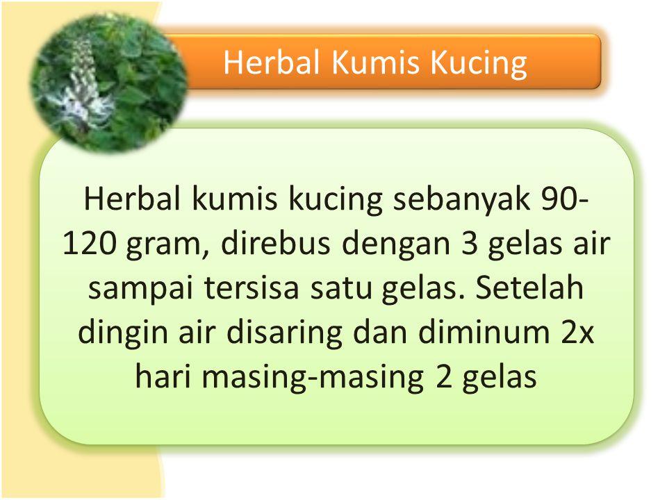 Herbal Kumis Kucing Herbal kumis kucing sebanyak 90- 120 gram, direbus dengan 3 gelas air sampai tersisa satu gelas. Setelah dingin air disaring dan d
