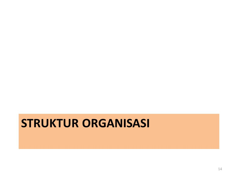 STRUKTUR ORGANISASI 14