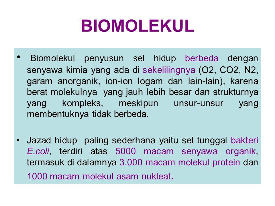 BIOMOLEKUL Biomolekul penyusun sel hidup berbeda dengan senyawa kimia yang ada di sekelilingnya (O2, CO2, N2, garam anorganik, ion-ion logam dan lain-