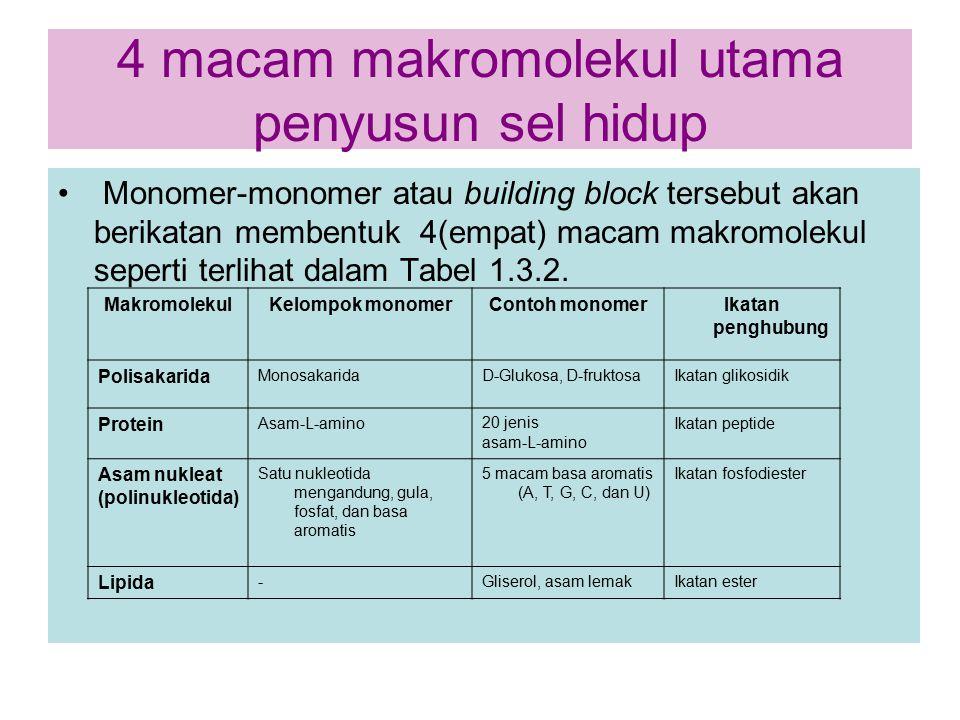 4 macam makromolekul utama penyusun sel hidup Monomer-monomer atau building block tersebut akan berikatan membentuk 4(empat) macam makromolekul sepert