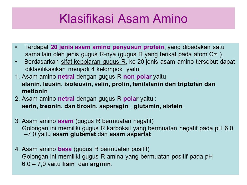Klasifikasi Asam Amino Terdapat 20 jenis asam amino penyusun protein, yang dibedakan satu sama lain oleh jenis gugus R-nya (gugus R yang terikat pada