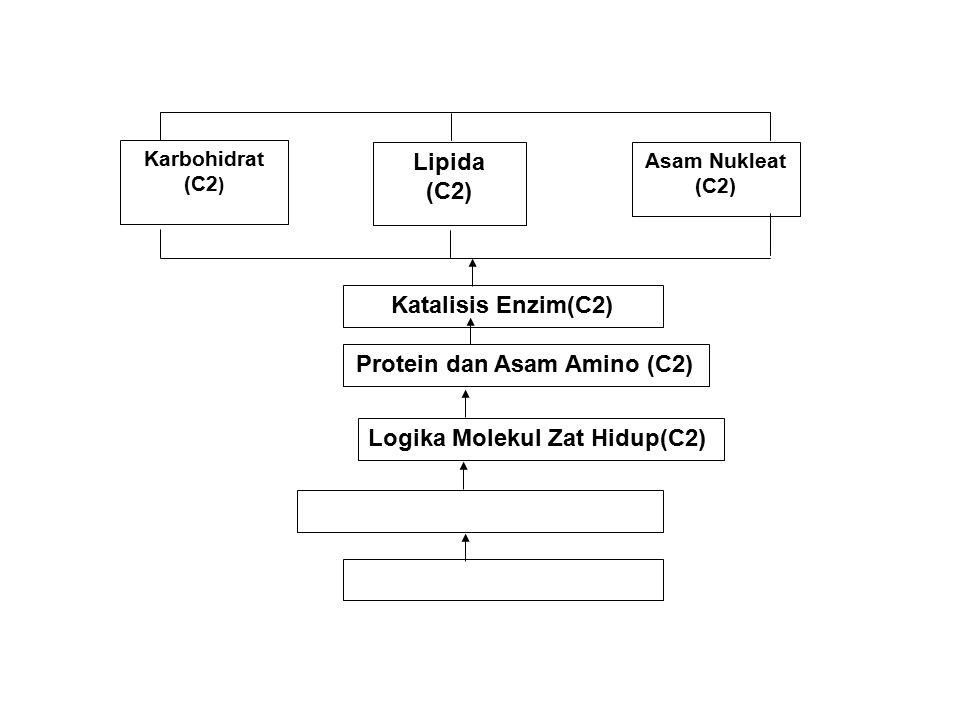 Karbohidrat (C2 ) Katalisis Enzim(C2) Logika Molekul Zat Hidup(C2) Protein dan Asam Amino (C2) Asam Nukleat (C2) Lipida (C2)