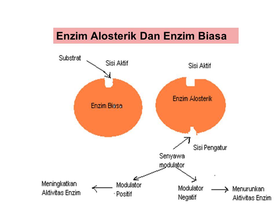 Enzim Alosterik Dan Enzim Biasa