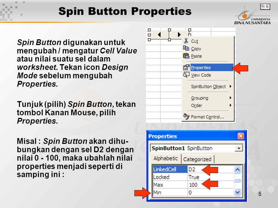 6 Spin Button Demo Spin ButtonLink Cell (D2)