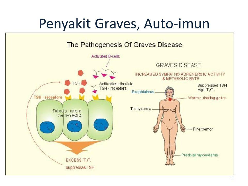 Penyakit Graves, Auto-imun 4