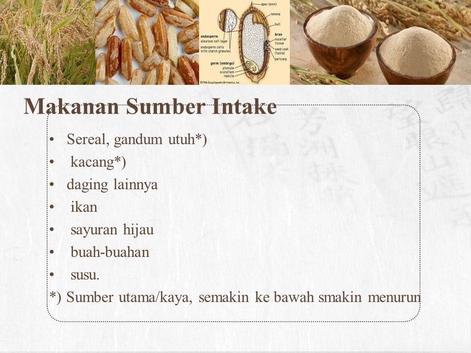 Makanan Sumber Intake Sereal, gandum utuh*) kacang*) daging lainnya ikan sayuran hijau buah-buahan susu. *) Sumber utama/kaya, semakin ke bawah smakin
