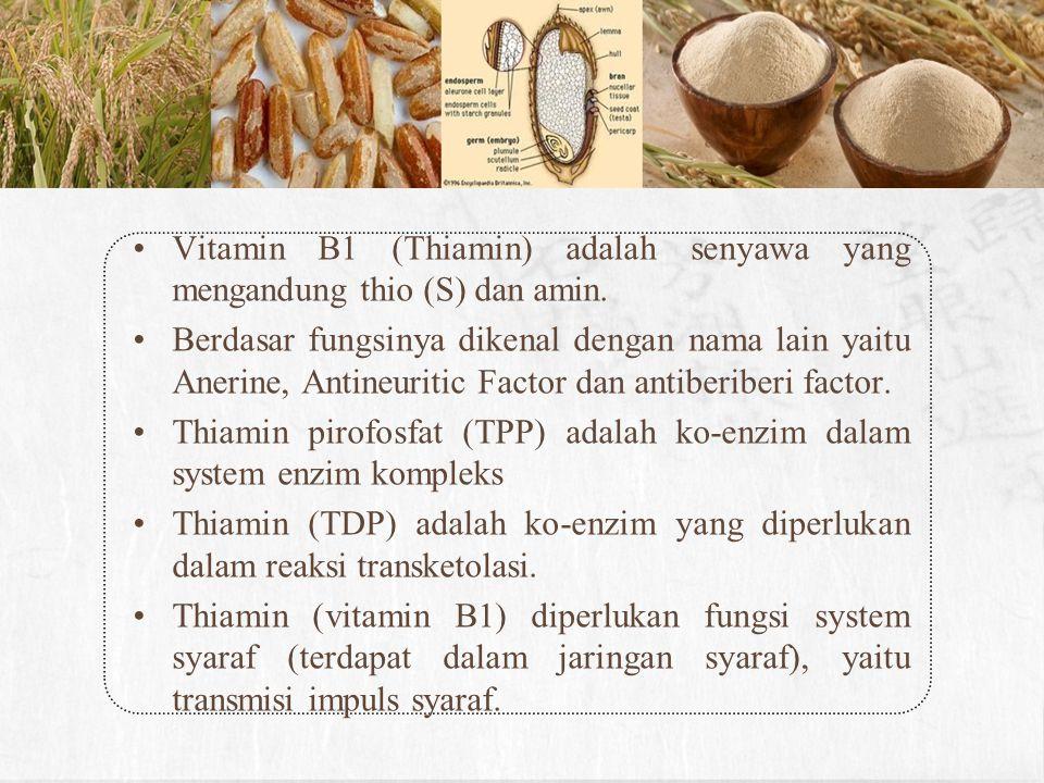 Sifat-sifat Tiamin larut dalam alkohol 70 % dan air, dapat rusak oleh panas, terutama dengan adanya alkali.