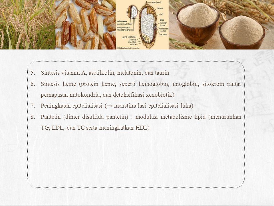 5.Sintesis vitamin A, asetilkolin, melatonin, dan taurin 6.Sintesis heme (protein heme, seperti hemoglobin, mioglobin, sitokrom rantai pernapasan mito