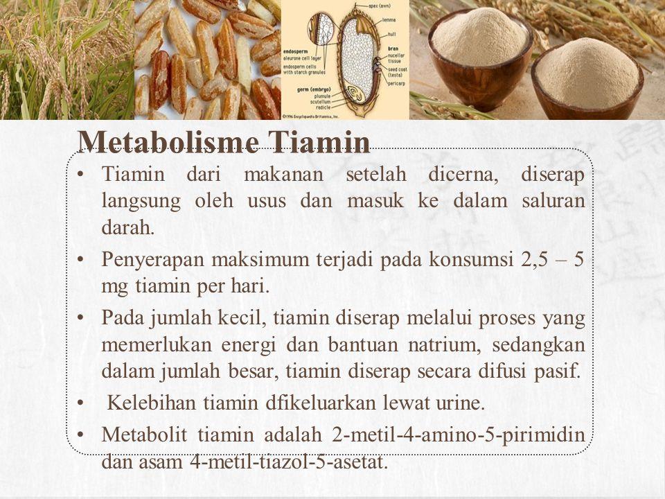 Bahan panganKandungan vitamin B3 (mg/ 100 g) Dedak padi (bekatul)33,995 Nasi 0,29 Kacang tanah 12,066 Daging sapi 2,456 Dedak gandum13,578 Tuna8,65 Ginjal sapi8,030 Tabel 2.