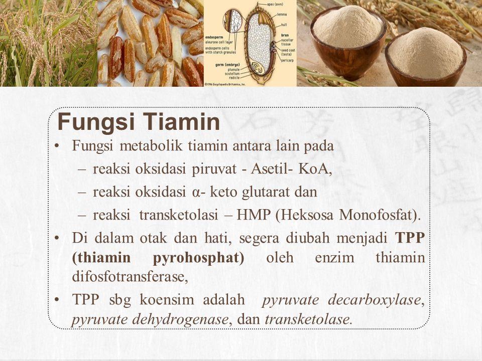 Makanan Sumber Intake Sereal, gandum utuh*) kacang*) daging lainnya ikan sayuran hijau buah-buahan susu.