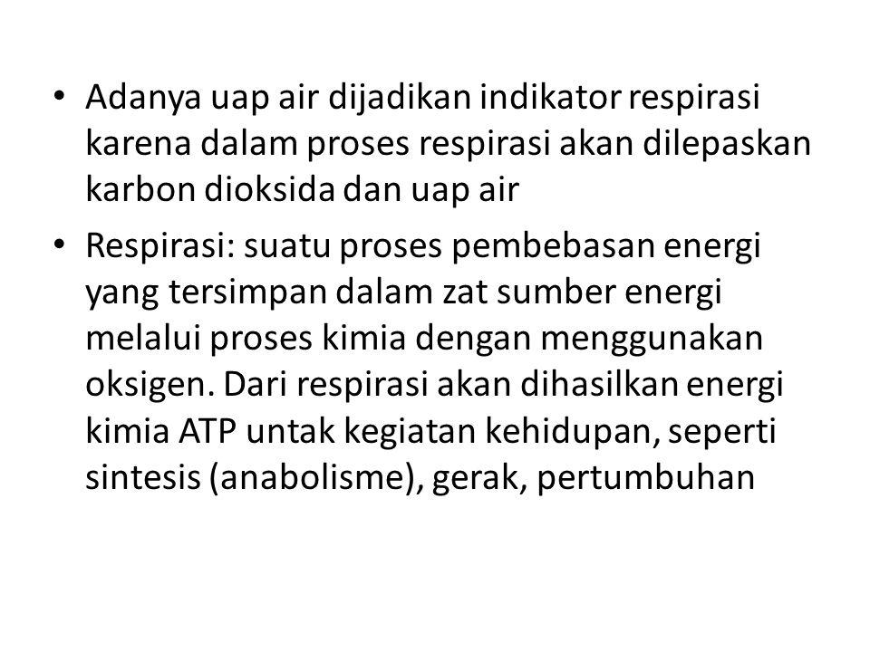4.Transfer elektron: serangkaian reaksi yang melibatkan sistem karier elektron (pembawa elektron).