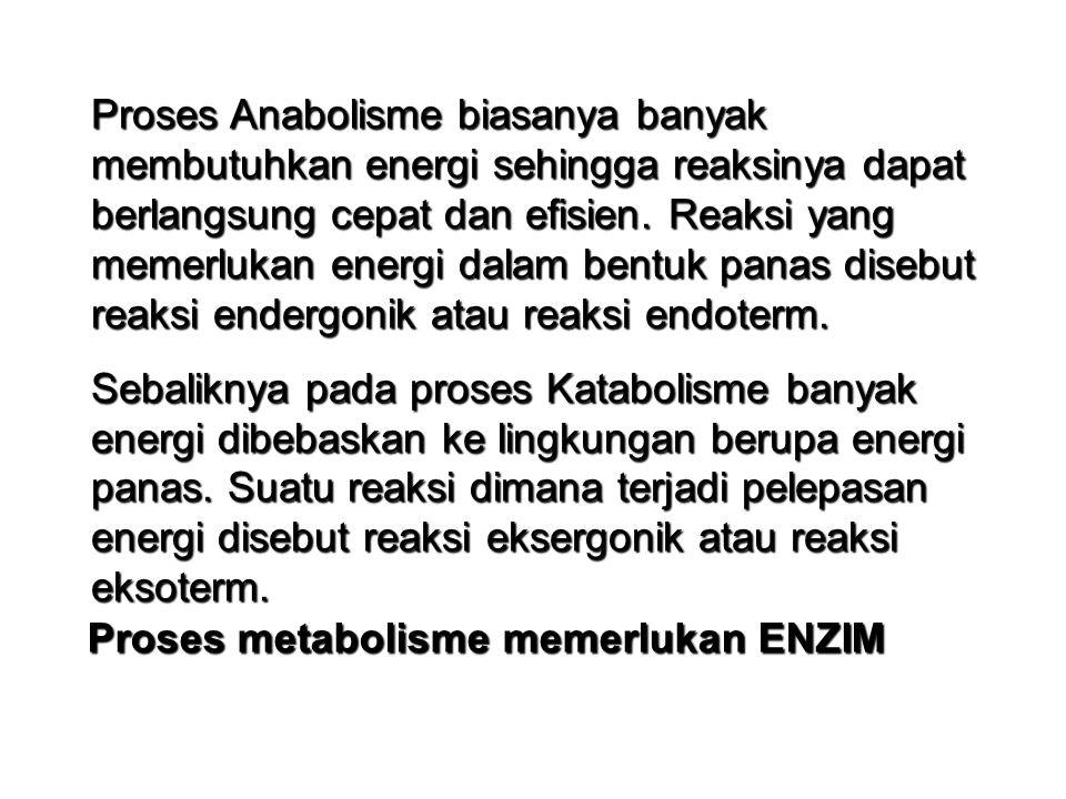 METABOLISME ANABOLISME Proses Pembentukan Contoh: Fotosintesis, Kemosintesis Sintesis lemak, Sintesis protein KATABOLISME Proses Penguraian Contoh : Respirasi Sel Fermentasi