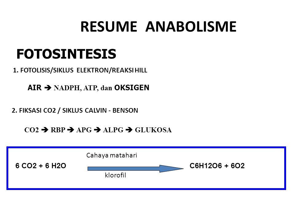 AMONIUMNITRIT NITRAT NITRIFIKASI DENITRIFIKASI AMONIUM NITRITNITRAT Nitrosomonas Nitrococcus Nitrobacter