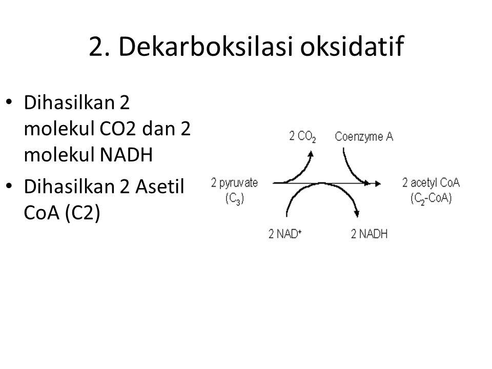 1. GLIKOLISIS Berlangsung di dalam SITOPLASMA Glukosa (C6)  C3 Menggunakan 2 ATP Menghasilkan 2 ATP Menghasilkan 2 molekul Piruvat