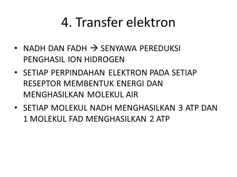 3. Daur Krebs Pembentukan asam sitrat (C6) dari asam asetat (C2) dan asam oksaloasetat (C4) Menghasilkan 2 ATP, 6NADH, 2FADH, 6 CO2 Berlangsung di dal