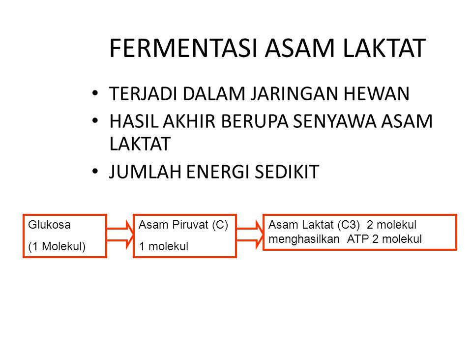 4. Transfer elektron NADH DAN FADH  SENYAWA PEREDUKSI PENGHASIL ION HIDROGEN SETIAP PERPINDAHAN ELEKTRON PADA SETIAP RESEPTOR MEMBENTUK ENERGI DAN ME