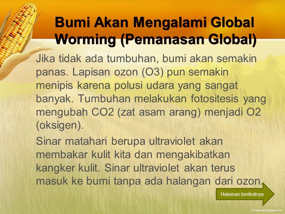 Bumi Akan Mengalami Global Worming (Pemanasan Global) Bumi Akan Mengalami Global Worming (Pemanasan Global) Jika tidak ada tumbuhan, bumi akan semakin