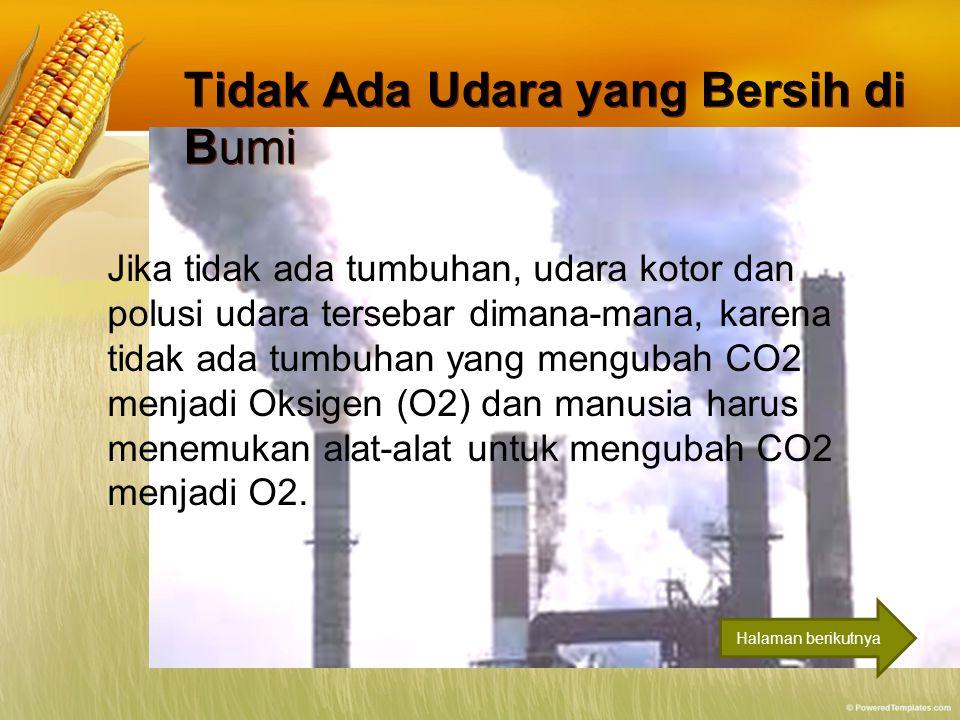 Tidak Ada Udara yang Bersih di Bumi Tidak Ada Udara yang Bersih di Bumi Jika tidak ada tumbuhan, udara kotor dan polusi udara tersebar dimana-mana, ka