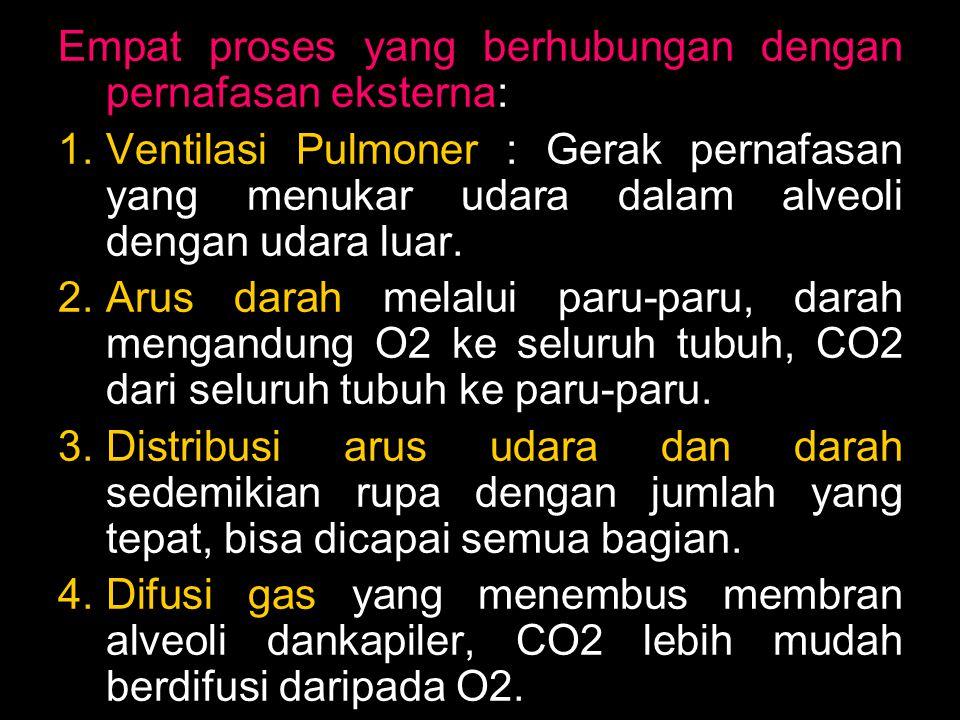Empat proses yang berhubungan dengan pernafasan eksterna: 1.Ventilasi Pulmoner : Gerak pernafasan yang menukar udara dalam alveoli dengan udara luar.