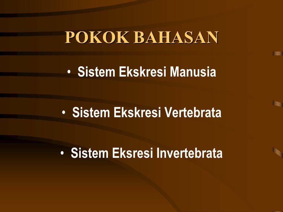 POKOK BAHASAN Sistem Ekskresi Manusia Sistem Ekskresi Vertebrata Sistem Eksresi Invertebrata