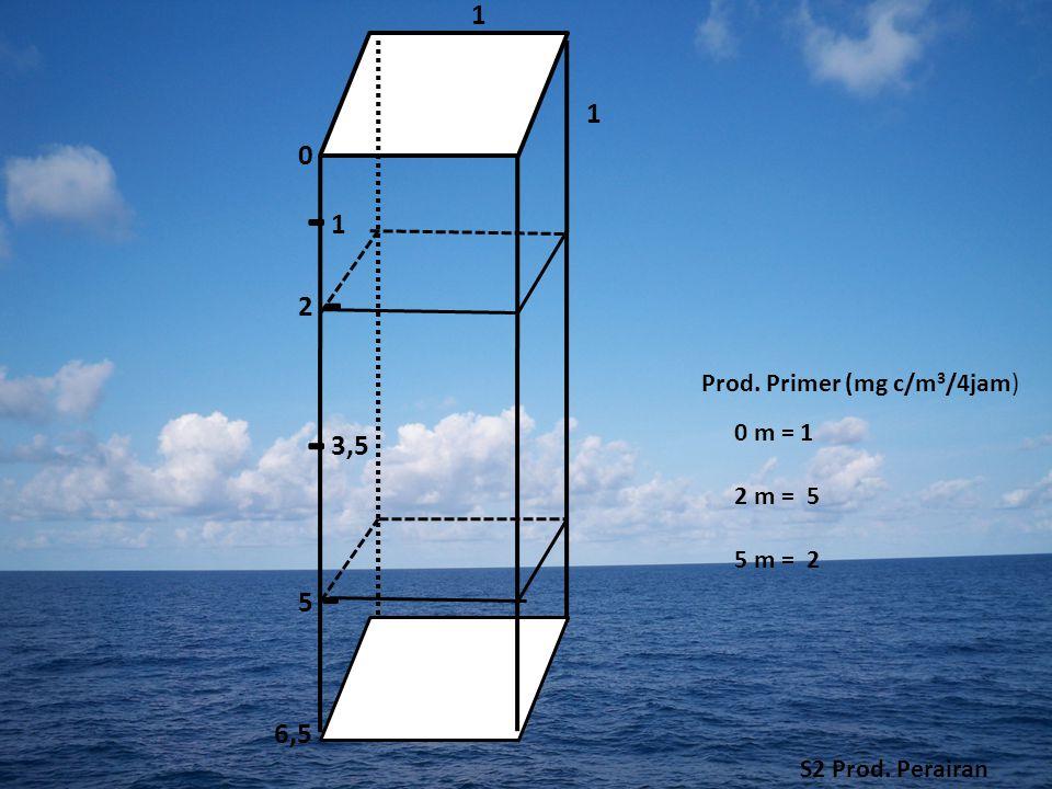 1 1 2 3,5 1 0 5 - - - - Prod. Primer (mg c/m 3 /4jam) 0 m = 1 2 m = 5 5 m = 2 6,5 S2 Prod. Perairan