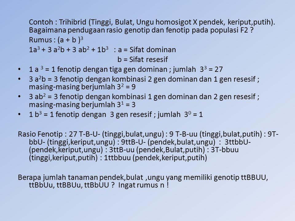 Contoh : Trihibrid (Tinggi, Bulat, Ungu homosigot X pendek, keriput,putih). Bagaimana pendugaan rasio genotip dan fenotip pada populasi F2 ? Rumus : (