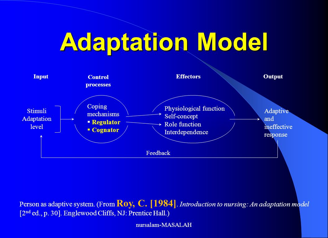 Adaptation Model Person as adaptive system.(From Roy, C.
