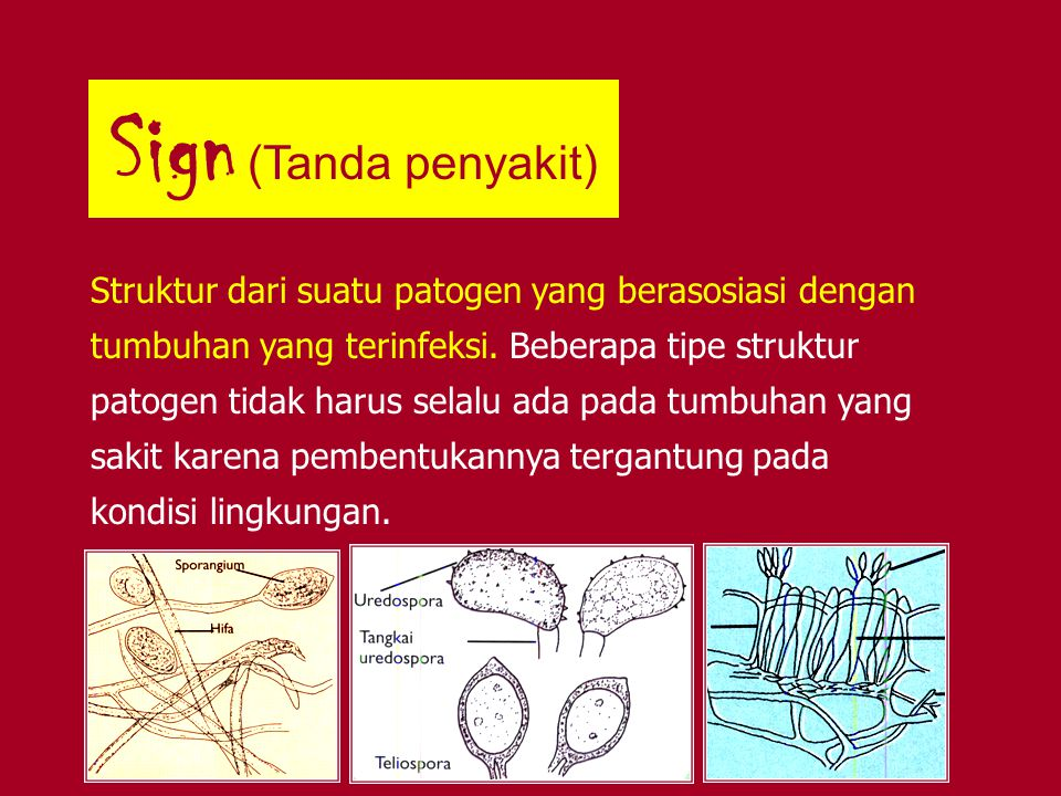 Sign (Tanda penyakit) Struktur dari suatu patogen yang berasosiasi dengan tumbuhan yang terinfeksi. Beberapa tipe struktur patogen tidak harus selalu