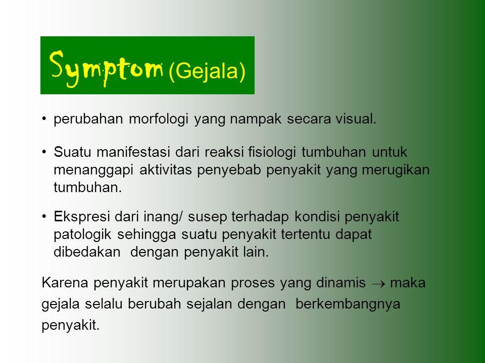 Symptom (Gejala) perubahan morfologi yang nampak secara visual. Suatu manifestasi dari reaksi fisiologi tumbuhan untuk menanggapi aktivitas penyebab p