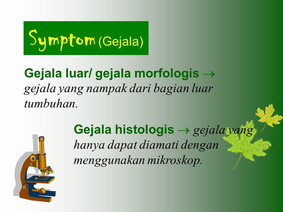 Symptom (Gejala) Gejala luar/ gejala morfologis  gejala yang nampak dari bagian luar tumbuhan. Gejala histologis  gejala yang hanya dapat diamati de