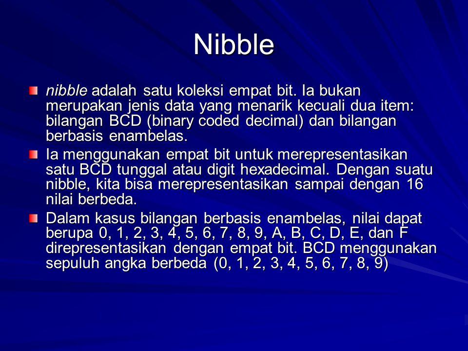 Nibble nibble adalah satu koleksi empat bit. Ia bukan merupakan jenis data yang menarik kecuali dua item: bilangan BCD (binary coded decimal) dan bila