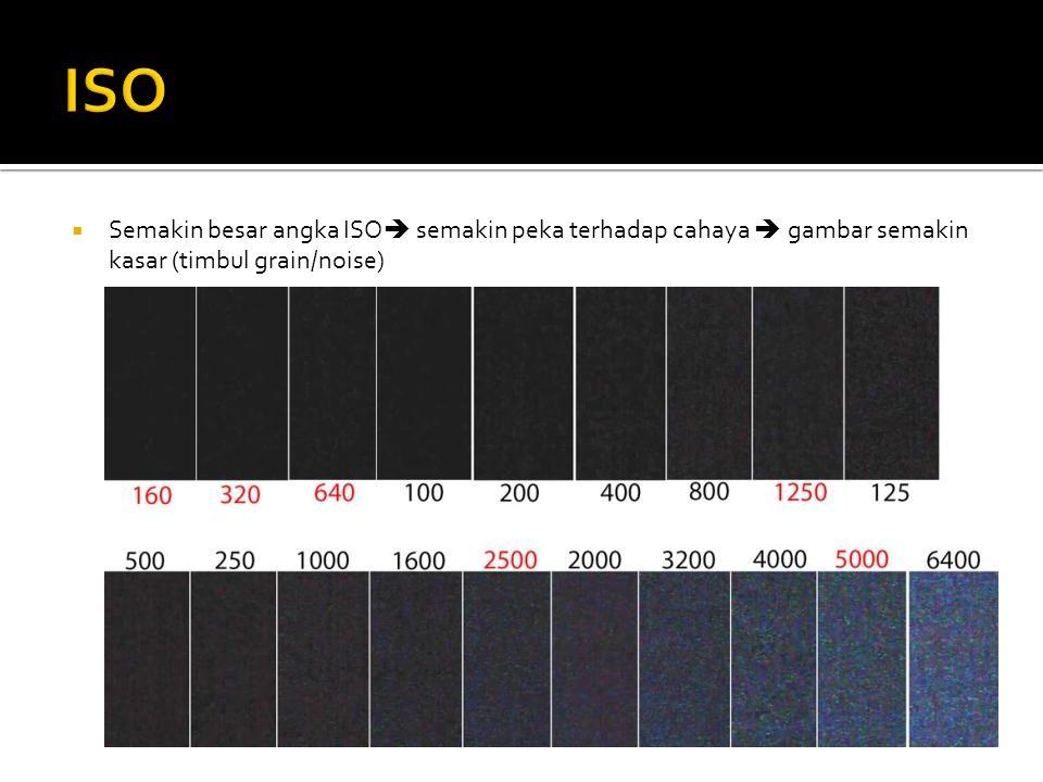  Semakin besar angka ISO  semakin peka terhadap cahaya  gambar semakin kasar (timbul grain/noise)