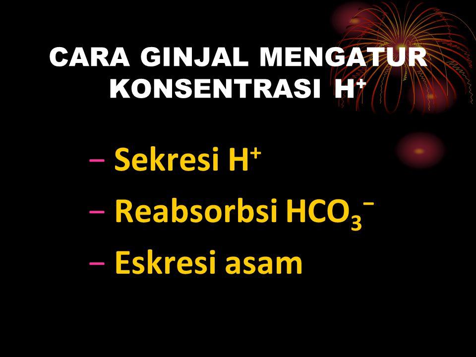 GANGGUAN ASAM-BASA 1.Asidosis Metabolik H + ↑, PH ↓, HCO 3 ⁻ ↓ 2.Alkalosis Metabolik H + ↓, PH ↑, HCO 3 ⁻ ↑ 3.Asidosis Respiratorik H + ↑, PH ↓, Pa CO 2 ↑ 4.Alkalosis Metabolik H + ↓, PH ↑, Pa CO 2 ↓