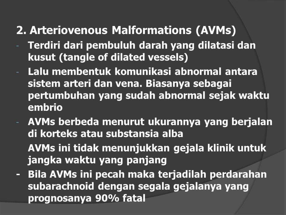 2. Arteriovenous Malformations (AVMs) - Terdiri dari pembuluh darah yang dilatasi dan kusut (tangle of dilated vessels) - Lalu membentuk komunikasi ab