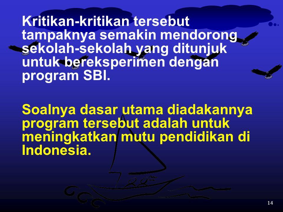 13 Banyak kritik yang dilontarkan oleh para pakar, politisi dan pemerhati pendidikan terhadap program SBI, umumnya berkaitan dengan:  Fasilitas yang