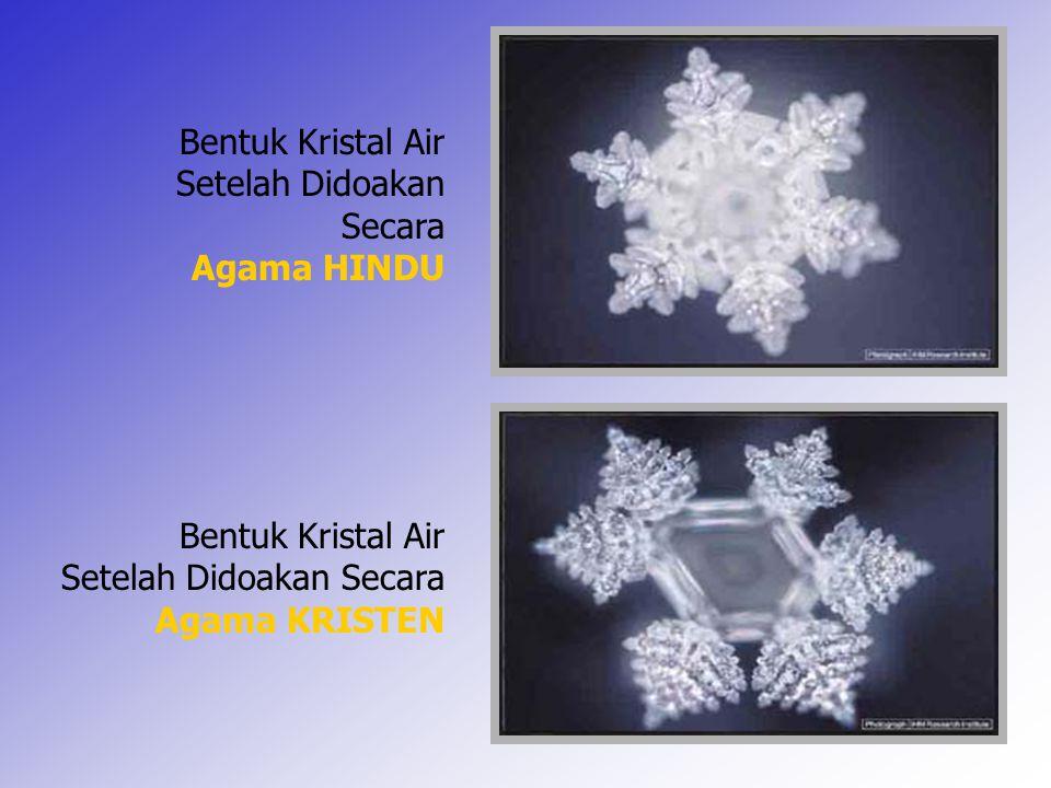 13 Bentuk Kristal Air Setelah Didoakan Secara Agama HINDU Bentuk Kristal Air Setelah Didoakan Secara Agama KRISTEN