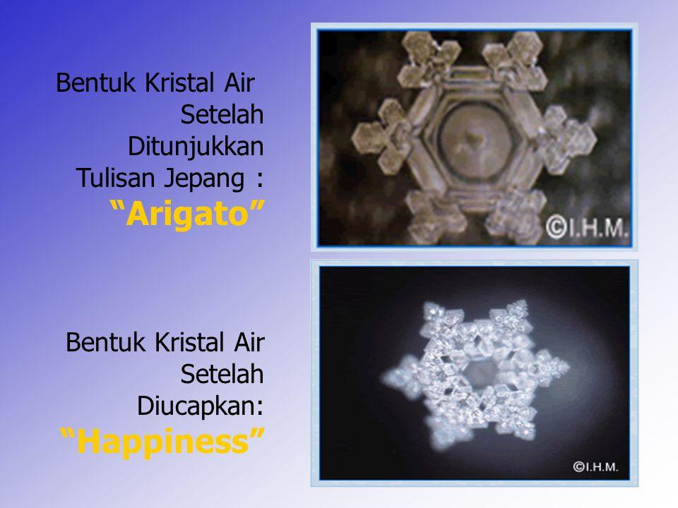 """7 Bentuk Kristal Air Setelah Ditunjukkan Tulisan Jepang : """"Arigato"""" Bentuk Kristal Air Setelah Diucapkan: """"Happiness"""""""