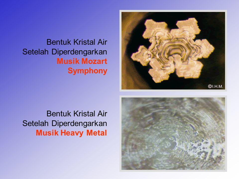 9 Bentuk Kristal Air Setelah Diperdengarkan Musik Mozart Symphony Bentuk Kristal Air Setelah Diperdengarkan Musik Heavy Metal