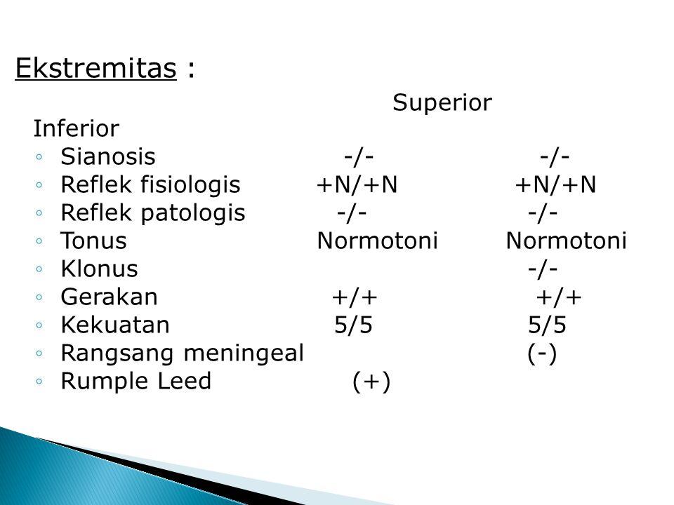 Ekstremitas : Superior Inferior Superior Inferior ◦ Sianosis -/- -/- ◦ Reflek fisiologis +N/+N +N/+N ◦ Reflek patologis -/- -/- ◦ Tonus Normotoni Normotoni ◦ Klonus -/- ◦ Gerakan +/+ +/+ ◦ Kekuatan 5/5 5/5 ◦ Rangsang meningeal (-) ◦ Rumple Leed (+)