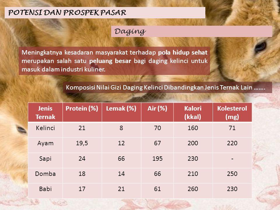 POTENSI DAN PROSPEK PASAR Keengganan masyarakat dalam mengkonsumsi daging kelinci adalah masalah psikis yang menganggap kelinci adalah hewan peliharaan yg lucu dan mungil.