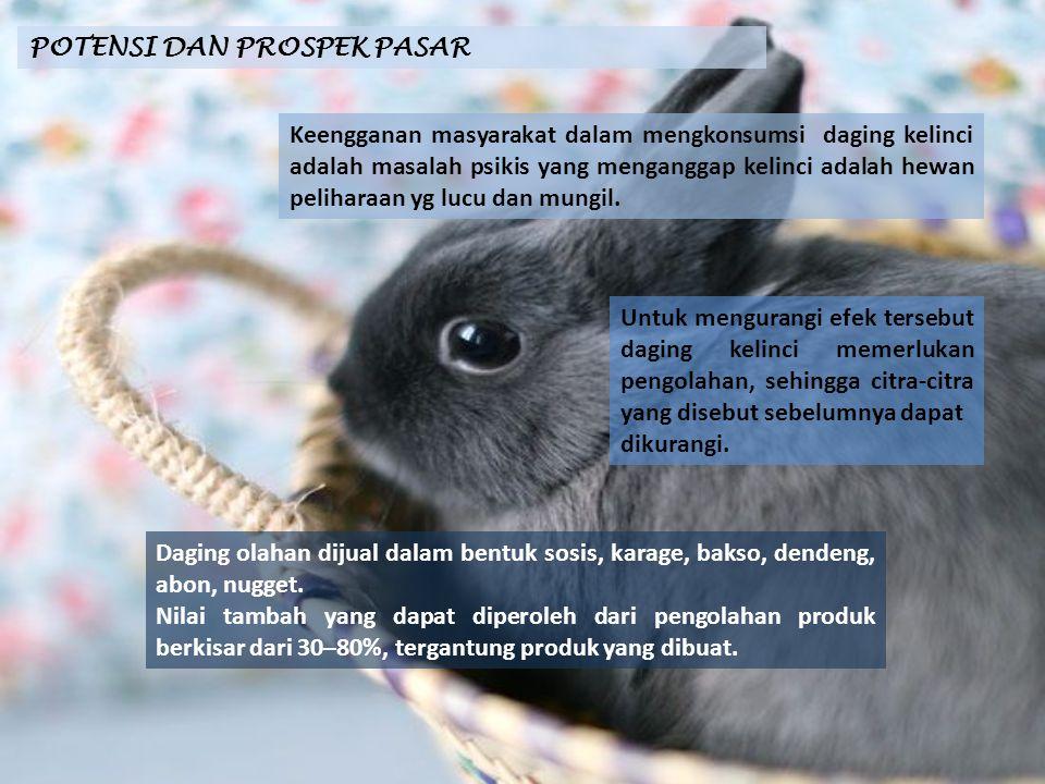 POTENSI DAN PROSPEK PASAR Keengganan masyarakat dalam mengkonsumsi daging kelinci adalah masalah psikis yang menganggap kelinci adalah hewan peliharaa