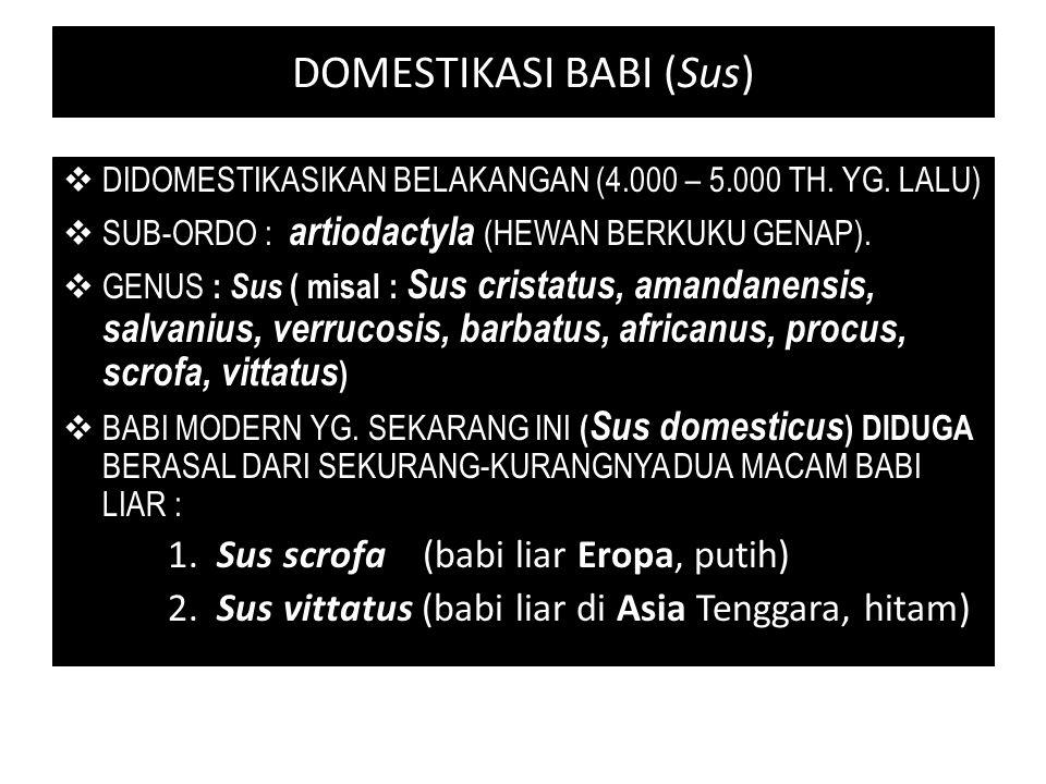 DOMESTIKASI BABI (Sus)  DIDOMESTIKASIKAN BELAKANGAN (4.000 – 5.000 TH. YG. LALU)  SUB-ORDO : artiodactyla (HEWAN BERKUKU GENAP).  GENUS : Sus ( mis