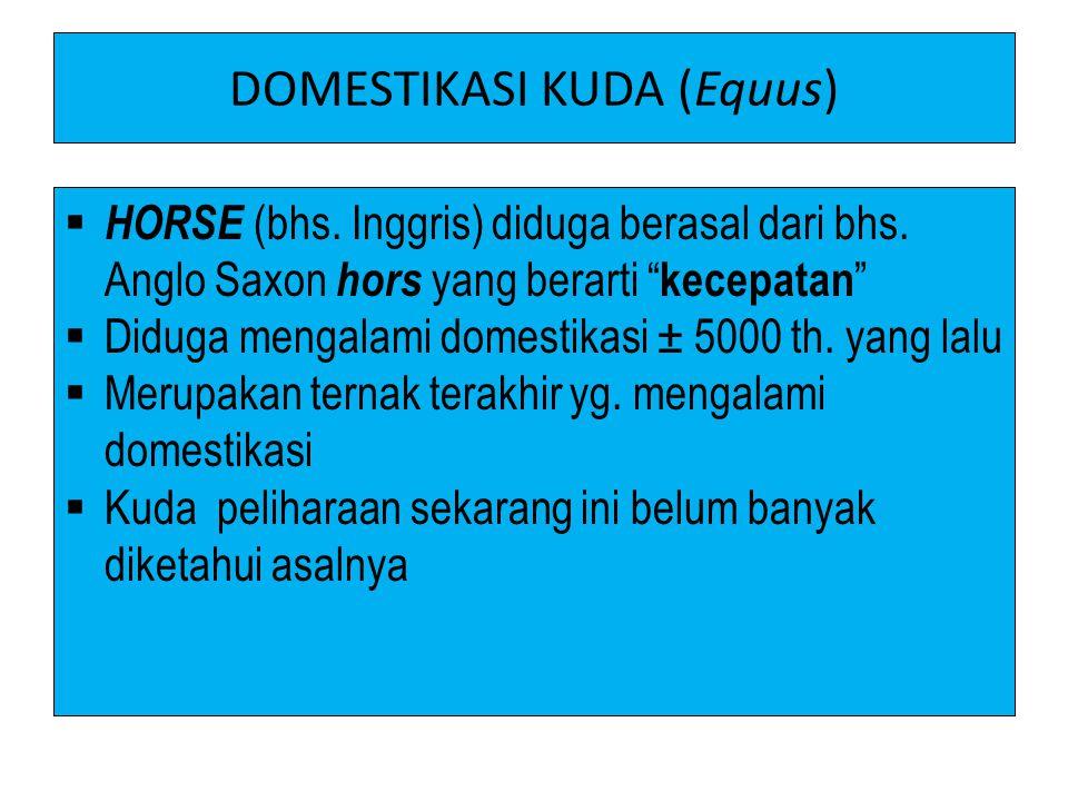 """DOMESTIKASI KUDA (Equus)  HORSE (bhs. Inggris) diduga berasal dari bhs. Anglo Saxon hors yang berarti """" kecepatan """"  Diduga mengalami domestikasi ±"""