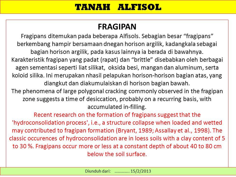 "TANAH ALFISOL FRAGIPAN Fragipans ditemukan pada beberapa Alfisols. Sebagian besar ""fragipans"" berkembang hampir bersamaan dnegan horison argilik, kada"
